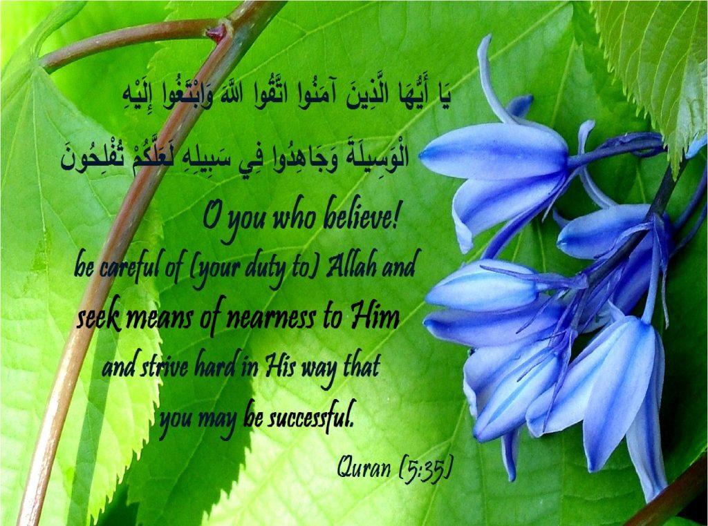 seek means of nearness
