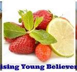 Strawberry Krusher Recipe
