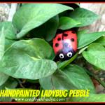 How-To-Paint-Ladybug-Stone-Rock-Pebble