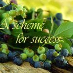 a-scheme-for-success