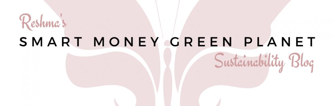 October 2020 Featured Blogger – Smart Money Green Planet