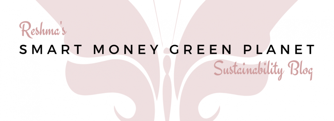 October 2020 Featured Blogger – Smart Money Green Planet