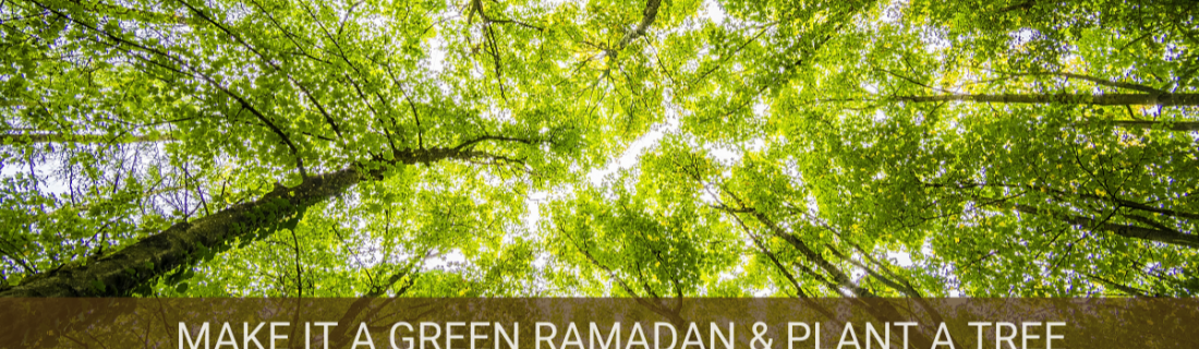Preserving the Environment During Ramadan – Ramadan 2020 Day 7