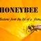 Honey Bee – Reflections from the Life of a Friend