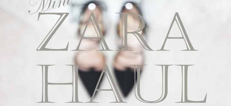 Mini Zara Haul