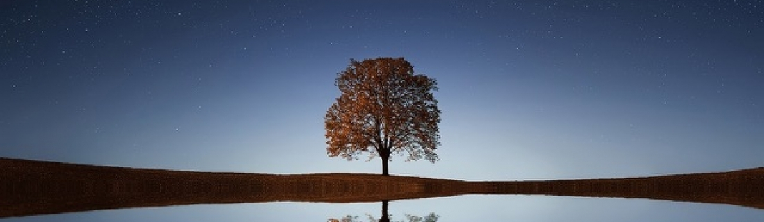 Ramadan Day 20 – A Lonely Muslim's Guide To Making The Most Of Ramadan